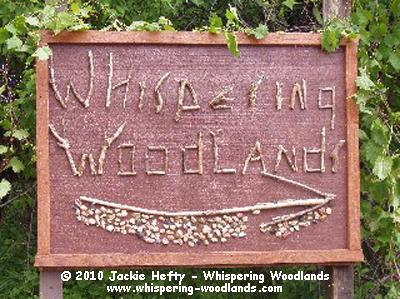 WhisperingWoodlands